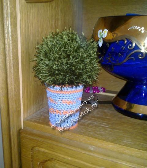 вязаный крючком кактус