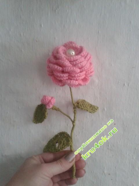 фото вязаных крючком цветов
