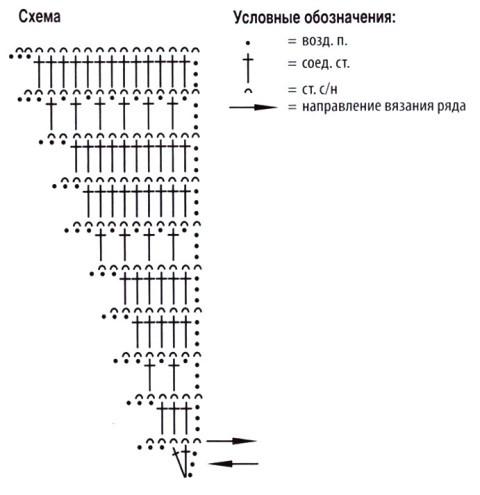 бактус схема
