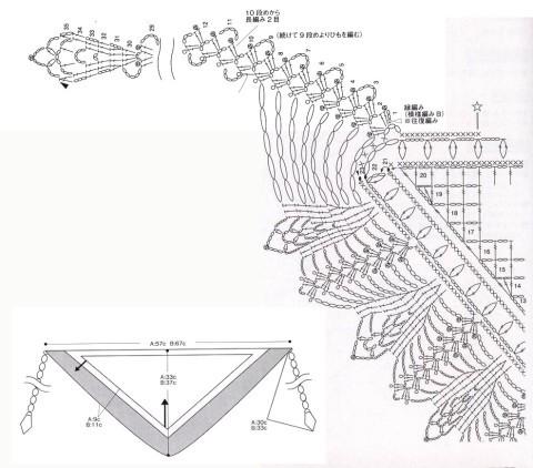 схема бактуса