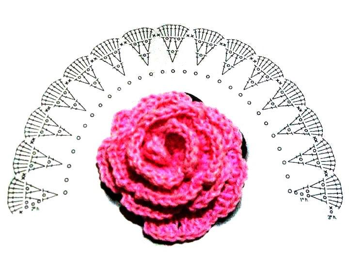 Схема цветка 6 класс 951
