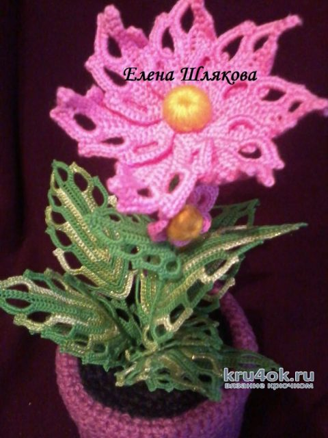 Вязаные цветы в горшочках. Работы Елены Шляковой вязание и схемы вязания