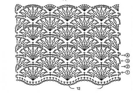 Схемы вязания узора ракушки (веера) крючком