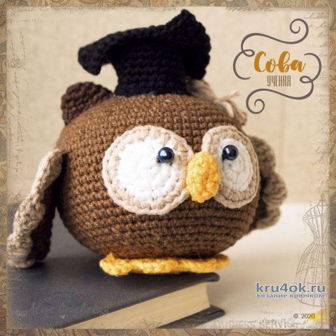 Ученая сова, вязанная крючком игрушка. Работа Alise Crochet вязание и схемы вязания