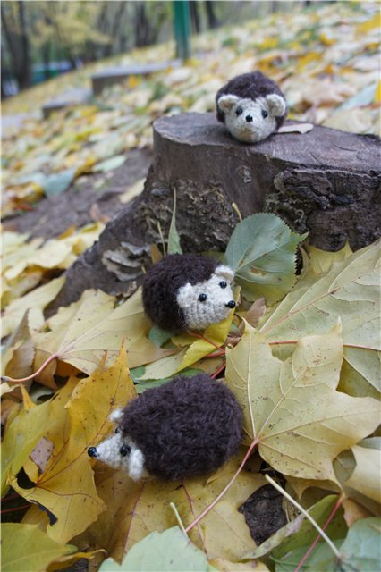 Crocheted little hedgehogs