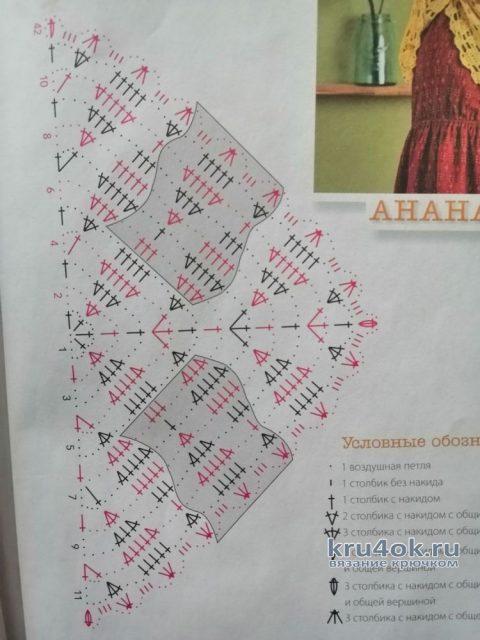 Бактус Ананас крючком. Работа Светланы вязание и схемы вязания
