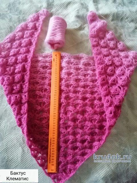 Бактус крючком Клематис. Работа Светланы вязание и схемы вязания