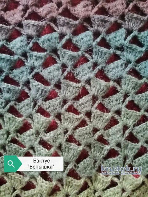 Бактус крючком Вспышка. Работа Светланы вязание и схемы вязания