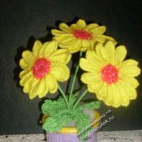 Вязаные цветы ромашки в горшочке