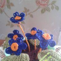Вязаные цветы — работы Алены
