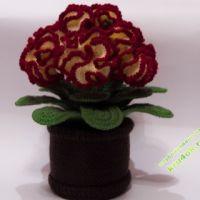 Вязаные крючком цветы в горшочке. Цветок  Целозия