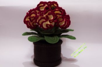 Вязаные крючком цветы в горшочке. Цветок  Целозия. Вязание крючком.