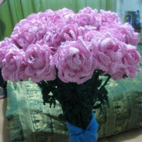 Розы крючком – работа Валентины
