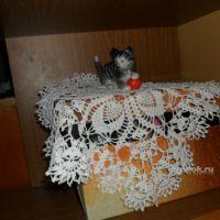 Вязаная крючком салфетка — работа Альбины Петровны
