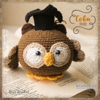 Ученая сова, вязанная крючком игрушка. Работа Alise Crochet